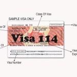 Visa 114 – Định cư Úc đoàn tụ gia đình diện người thân già yếu lệ thuộc