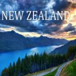 Tại sao sinh viên Việt Nam lại chọn du học New Zealand