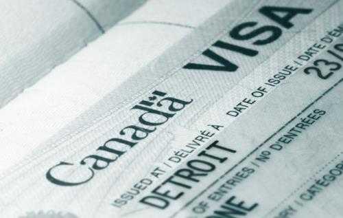 Nếu cha mẹ hoặc ông bà đang ở Canada với  Super Visa, họ có thể làm việc  ở Canada?
