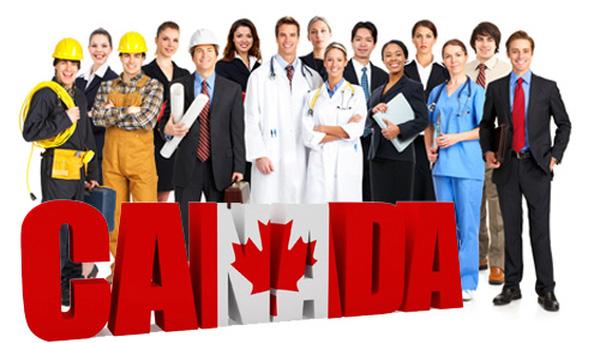 Gần 25% người lao động tại Canada là người nhập cư